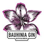 Gin Logo.jpg