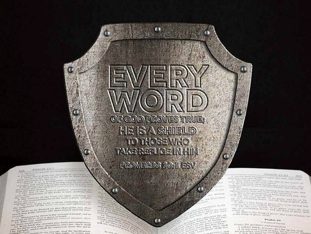 EVERY WORD OF GOD IS FLAWLESS - Proverbs 30:1-6
