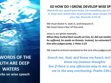 THE WORDS OF THEIR MOUTH ARE DEEP WATERS - Proverbs On Wise Speech