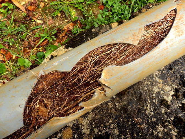 Split drainage pipe caused by ingress of