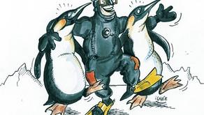 3 bonnes raisons pour lesquelles le froid ne doit pas vous faire arrêter de plonger !