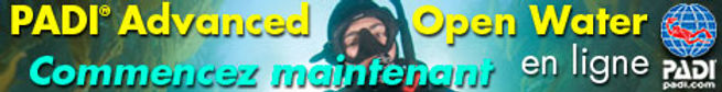 banner-F-AOWD2-static.jpg