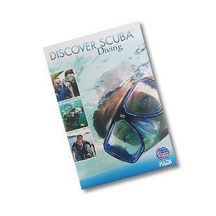 DSD-booklet.jpg