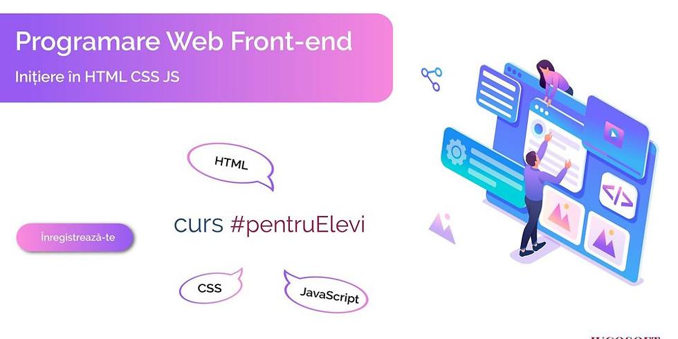 Curs de Programare Web Front-end (Inițiere în HTML CSS JS) pentru elevi la IUCOSOFT