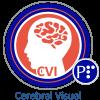 Cerebral_Visual_Impairment_Summer_2020.p