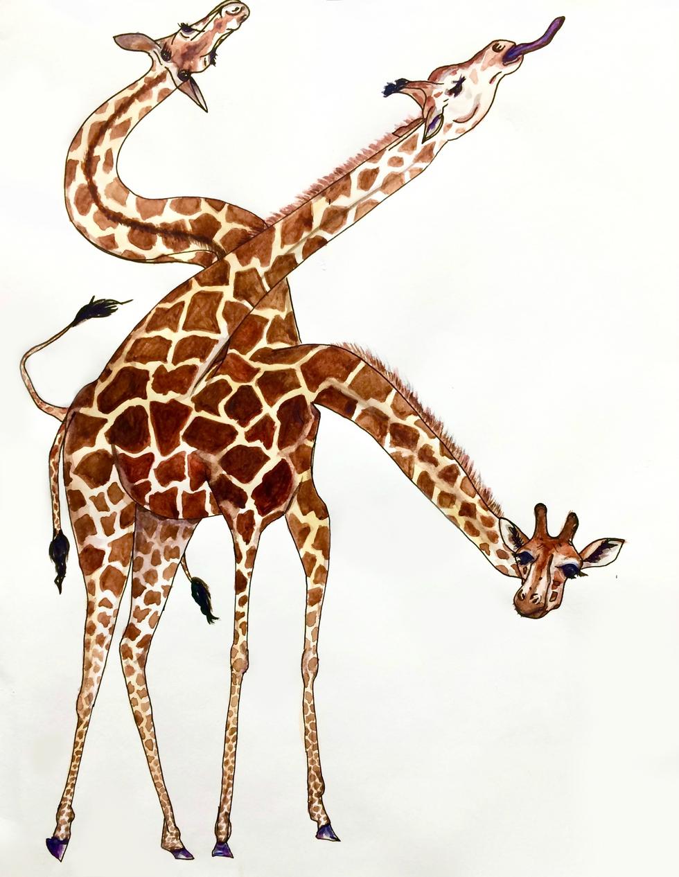 Giraff3