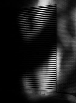 Feb6THShadow
