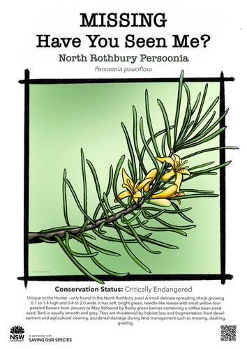 B5-North_Rothbury_Persoonia_DPIE_L_web.j