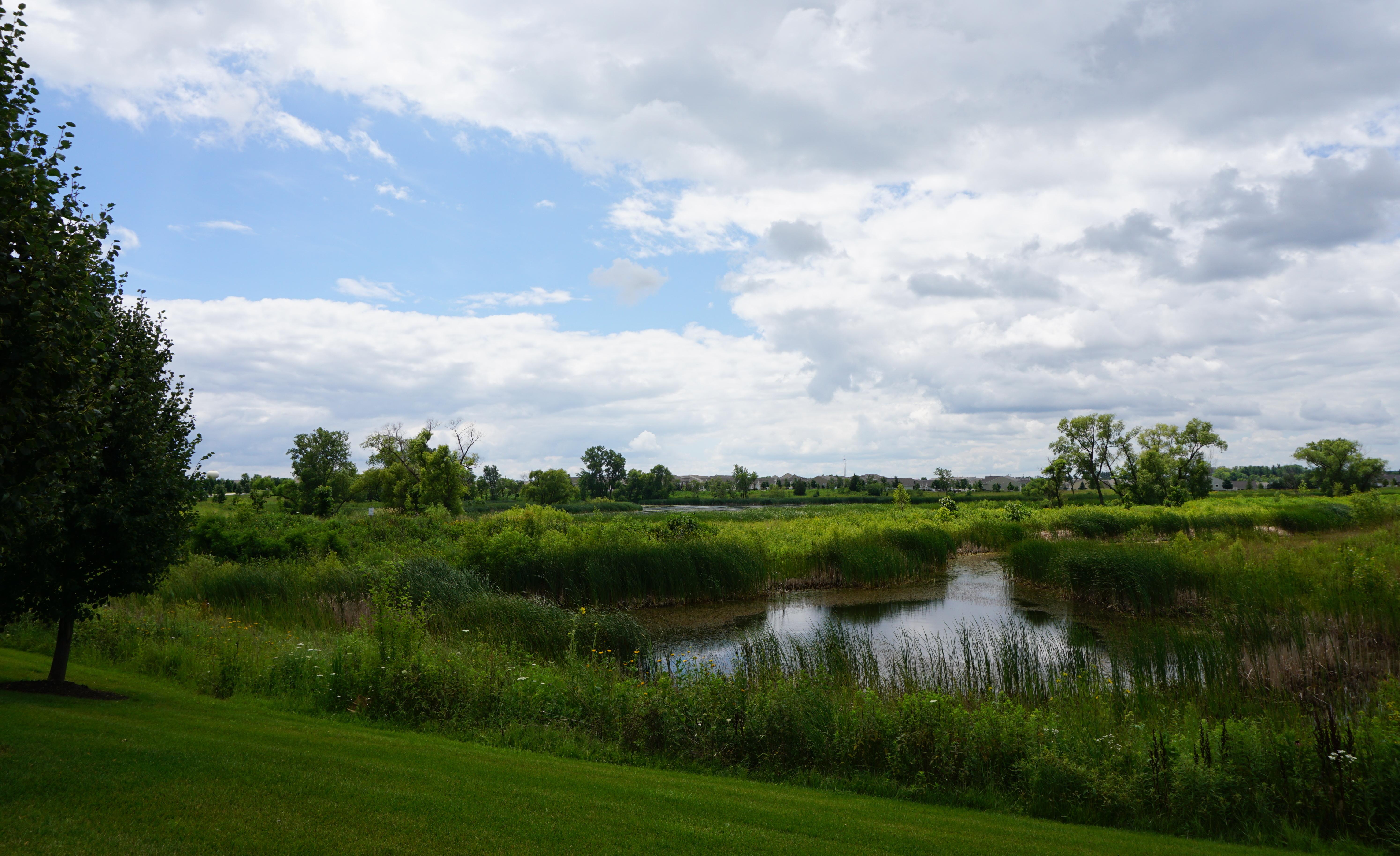 Summers Day 3 - Mundelein, IL