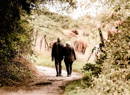 Enabling healthy aging through preventive health measures