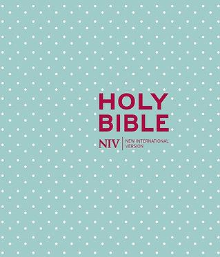 NIV Journaling Mint Polka Dot Cloth Bible
