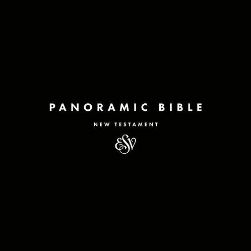 Panoramic Bible ~ New Testament