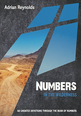 Numbers: In the Wilderness ~ Adrian Reynolds