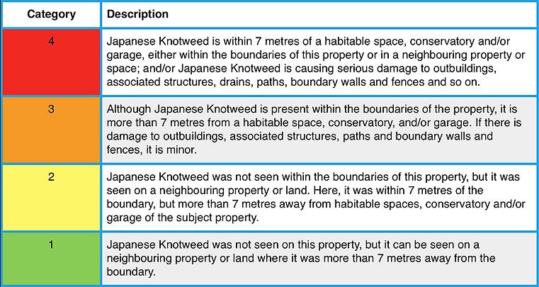 JAPANESE KNOTWEED REPORT