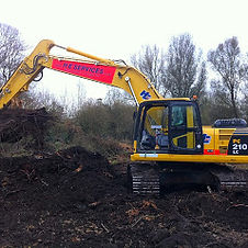 Japanese knotweed dig outs