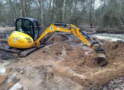 Reptile pond digging