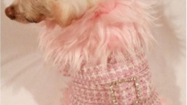 Fashionista Faux Fur Trimmed Dog Coat