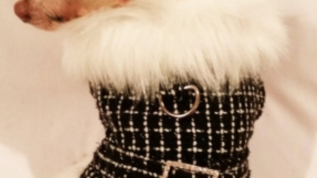 ription  Black Diamond Luxury Faux Fur Trimmed Coat