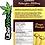 Thumbnail: 🍄Vision Edibles Chocolate Shrooms Bar🍫2500mg Psilocybin-Magic Mango
