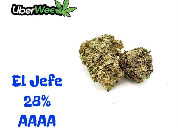💥🤴El Jefe AAAA 28%💥