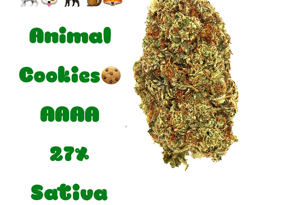 🐻🐶🦊🐈Animal Cookies Sativa AAAA