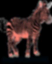 SsZz_WithTextBottom_TransparentBG (1).pn