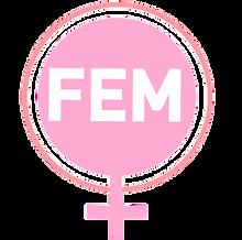 Fem Project Logo