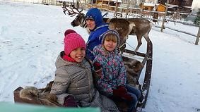 Встречаем Новый год на оленьей ферме