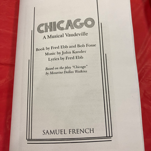 Chicago Playdate