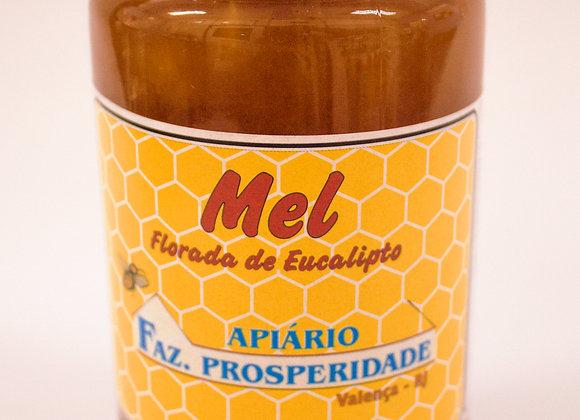 Vidro mel de eucalipto