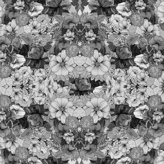 Black and whiteflower.jpg