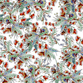 Amarantys pattern