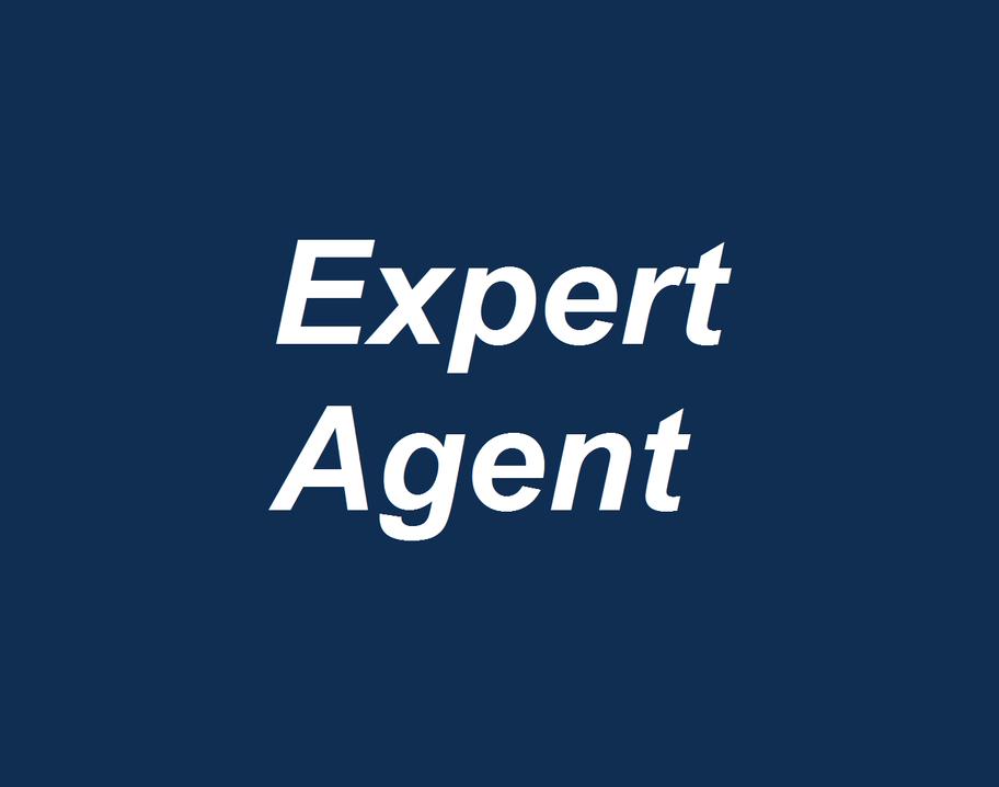 ExpertAgent.png
