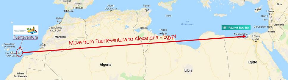 Trasferimento da Fuerteventura a Alexand