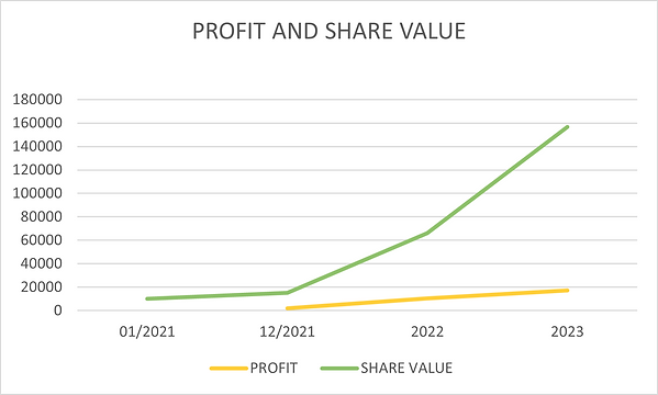 PROFIT AND SHARE VALUE.png