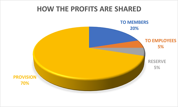 How the profits are shared.png