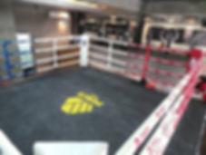 Surabaya's #1 MMA & Muay Thai Gym Since 2014