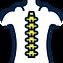 spinal-column.png