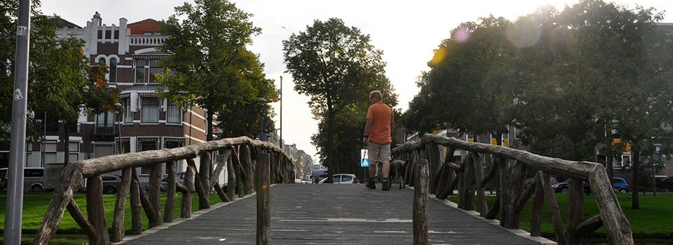 Dit is de brug als je richting de Schietbaanlaan loopt, daar woon ik. Ik kom hier bijna dagelijks. Aan het begin van de brug beslissen mij hond en ik waar we heen gaan link, rechts of rechtdoor. Als ik daar loop geeft mij dat een huiselijk gevoel want het is vlakbij huis. De brug voelt al seen middelpunt van de Heemraadssingel. (Jolanda)
