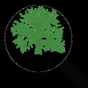 TreeGenealogy