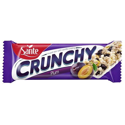 Sante Crunchy Bar Plum Vanilla Coated - 40g