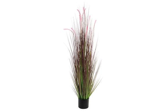 Plante en PVC 15,5X148