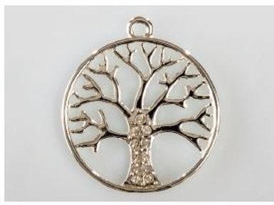 Applicazione albero della vita