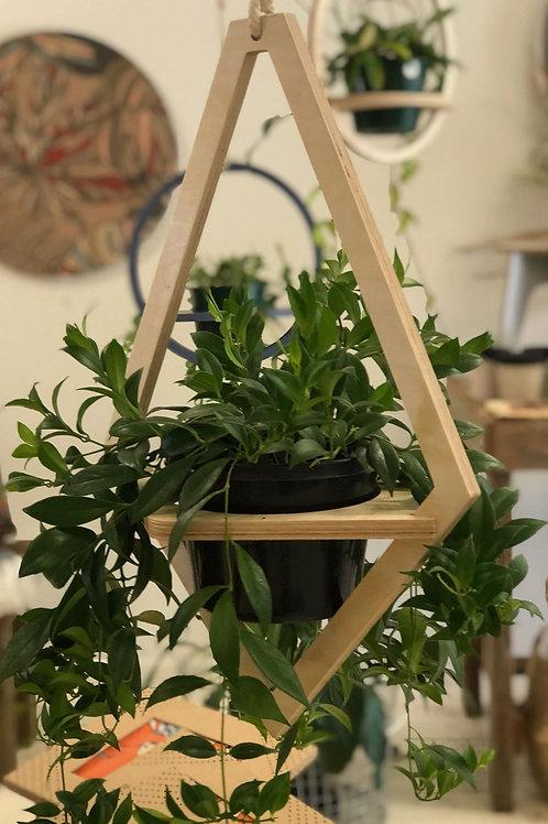 Ava Hanging Planter