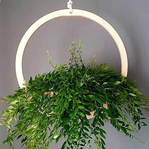 Eden Hanging Planter - Large