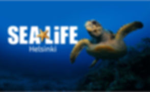 Sea Life Preview.jpg