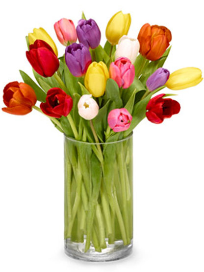Multi-Tulip Bouquet
