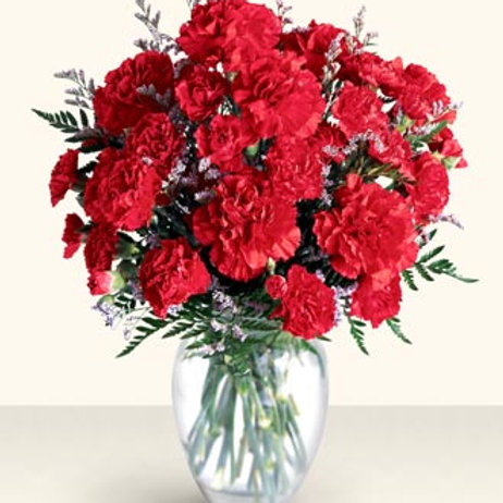 Red-Carnation Bouquet