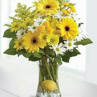 """Daisy Lemonade"" Bouquet"