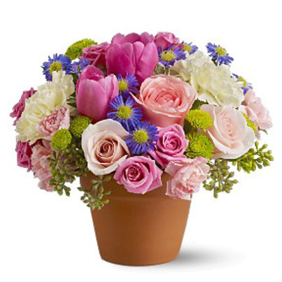 """Potted Petals"" Bouquet"
